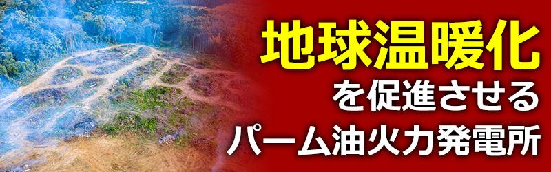 地球温暖化を促進させる舞鶴のパーム油火力発電所