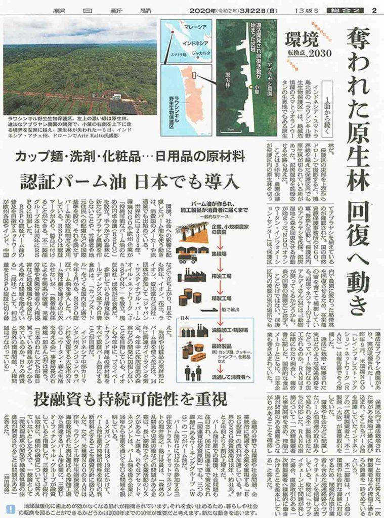 奪われた原生林 回復への動き