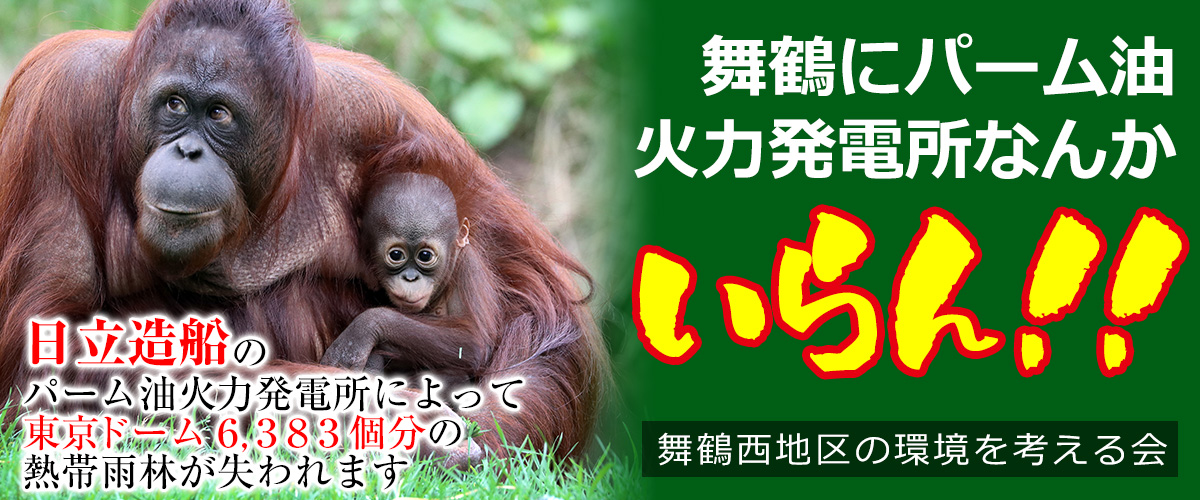 I don't need a palm oil power plant in Maizuru!